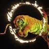 Цирки в Череповце